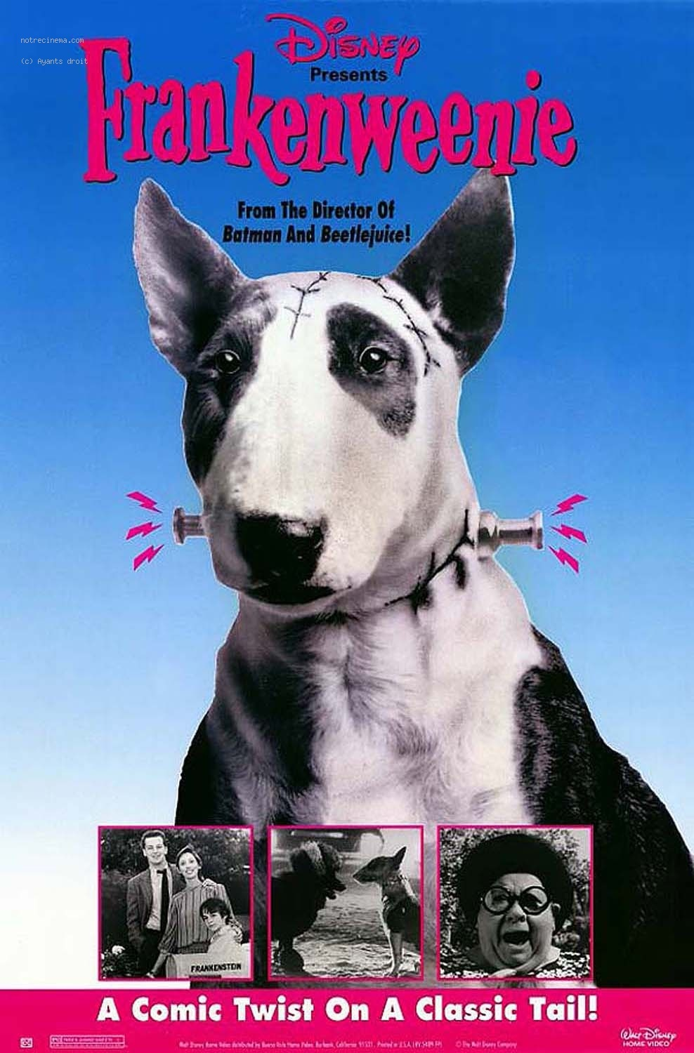 Horror-Wood Blog-a-Thon: Frankenweenie | Blockbuster Chronicles